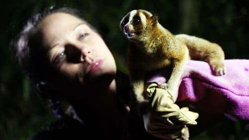 Natural World: 2011-2012 – Épisode Jungle Gremlins of Java