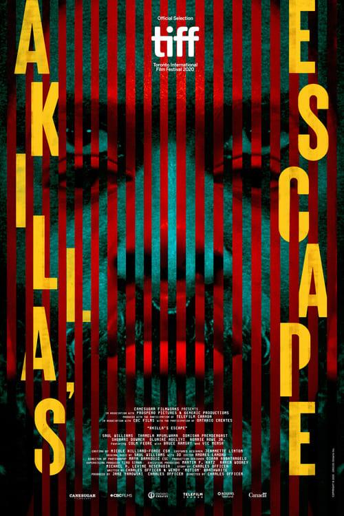 Largescale poster for Akilla's Escape