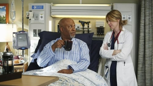 Grey's Anatomy - Season 10 - Episode 10: Somebody That I Used to Know