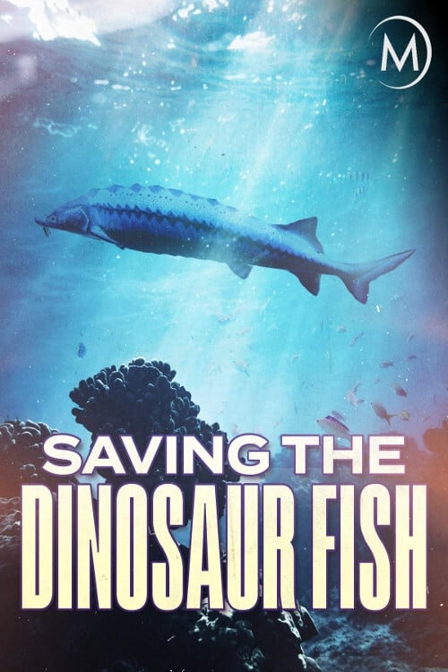 Saving the Dinosaur Fish ( Saving the Dinosaur Fish )