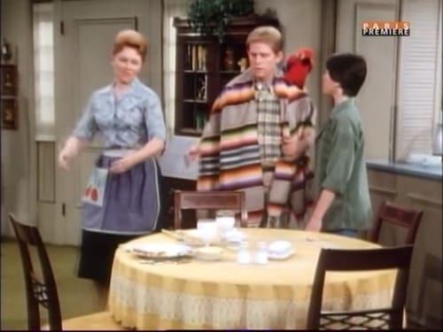 Happy Days: Season 5 – Episod Fonzie for the Defense