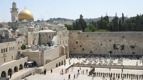 NOVA: Season 36 – Episode The Bible's Buried Secrets