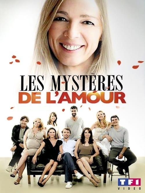 Les Mystères de l'amour (2011)
