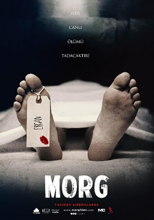 Morg ( Morg )