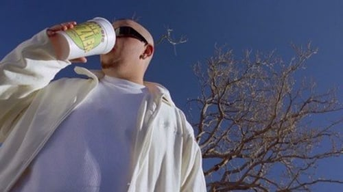 Breaking Bad - Season 2 - Episode 11: Mandala