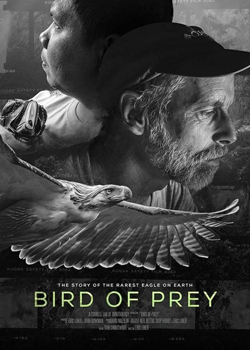 Bird of Prey (2018)