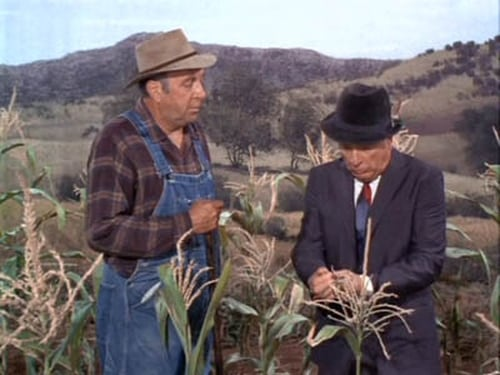 Green Acres: Season 3 – Épisode Oliver vs. the Phone Company