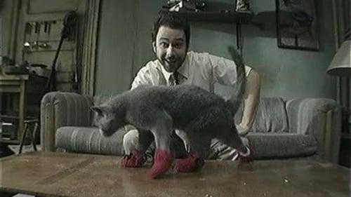 It's Always Sunny in Philadelphia - Season 5 - Episode 8: Paddy's Pub: Home of the Original Kitten Mittens