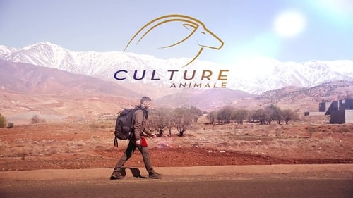 Culture Animale