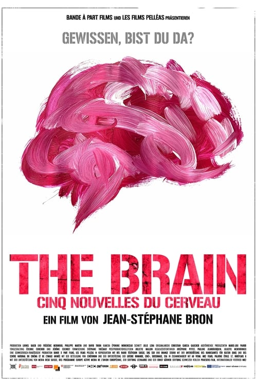 The Brain Found on page
