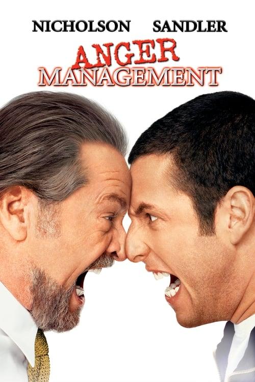 Anger Management (2003)