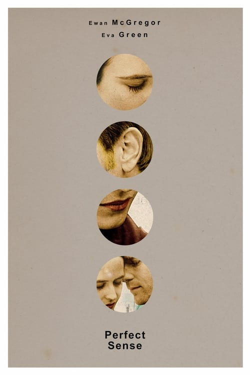 The poster of Perfect Sense