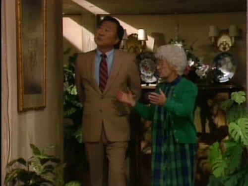 The Golden Girls 1988 Hd Tv: Season 4 – Episode We're Outta Here  (1)