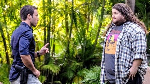 Hawaii Five-0: Season 4 – Episode Hoku Welowelo