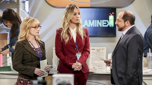 The Big Bang Theory - Season 12 - Episode 17: The Conference Valuation