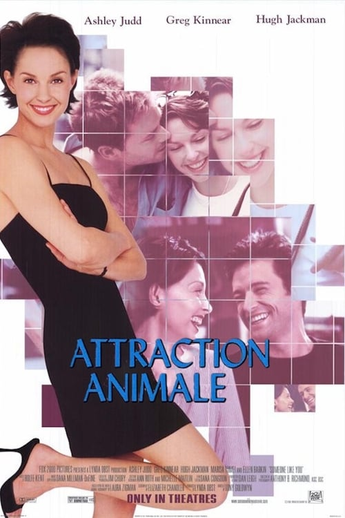 Image Attraction animale