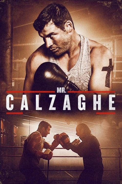 Mr. Calzaghe (2015)