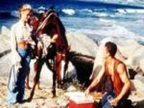 Baywatch 1993 1080p Extended: Season 4 – Episode Race Against Time (1)