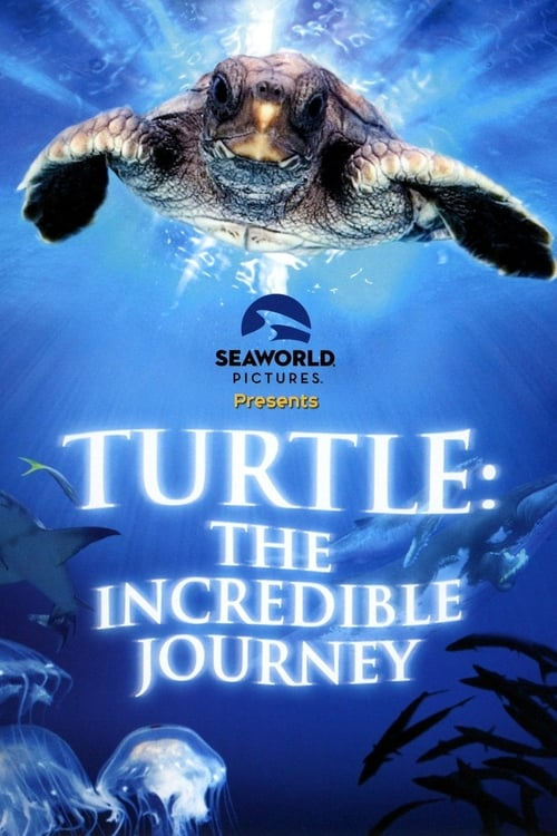 Turtle: The Incredible Journey (2009) Poster