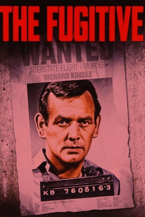 The Fugitive: Season 1