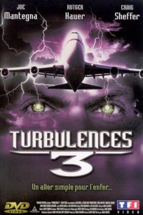 Turbulences 3 (2001)