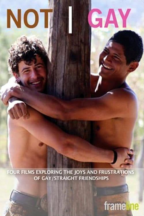 Not Gay (2008) Poster