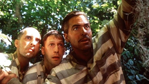 O Brother, Where Art Thou? - They have a plan... but not a clue. - Azwaad Movie Database
