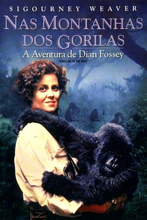 Filme Nas Montanhas dos Gorilas Em Boa Qualidade Hd 1080p