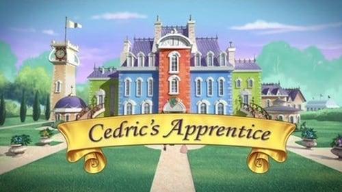 Sofia The First 2013 Hd Download: Season 1 – Episode Cedric's Apprentice