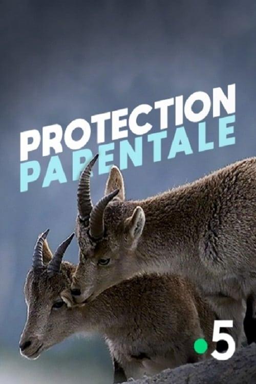 Protection parentale (2013)