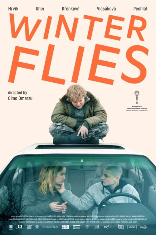 Watch Winter Flies Full Movie Stream Online Free