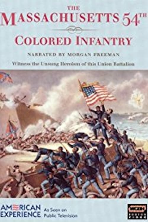 The Massachusetts 54th Colored Infantry (1991)