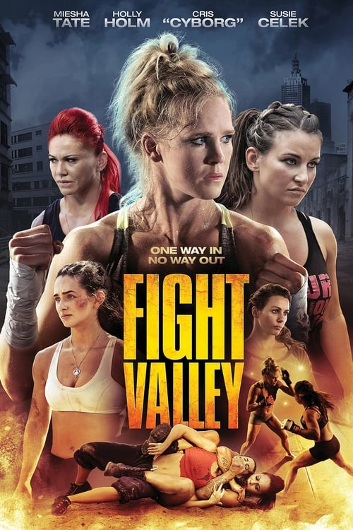 The poster of Fight Valley