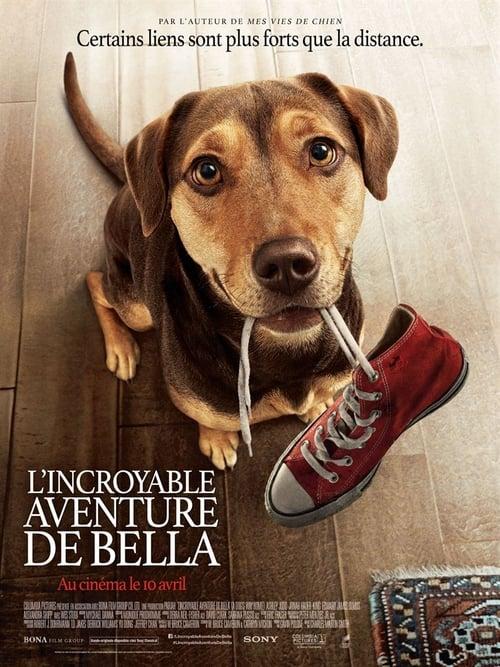 Regarder L'Incroyable Aventure de Bella Film'Complet 2019 Streaming VF