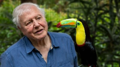 Assistir A Vida em Cores com David Attenborough S01E03 – 1×03 – Legendado