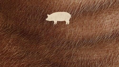 Pig Whom
