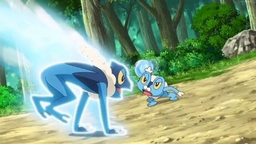 Pokémon: XY – Épisode A Rush of Ninja Wisdom!