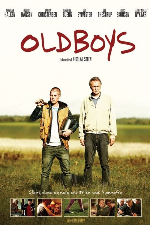 Largescale poster for Oldboys