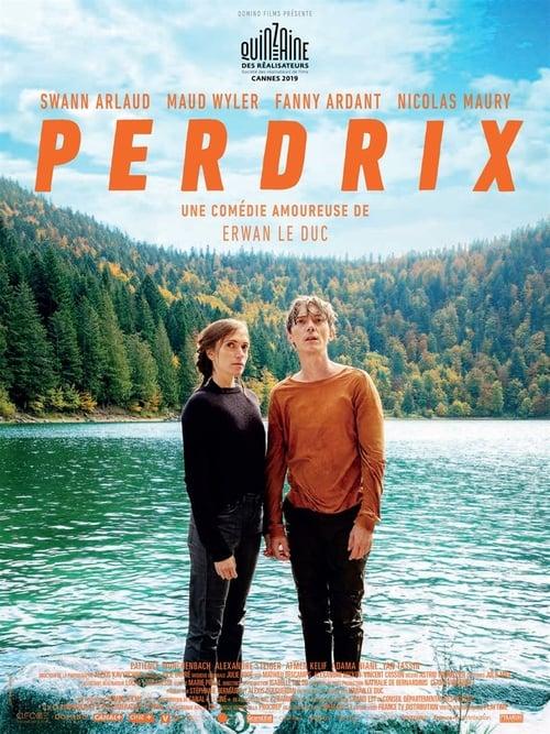 Filme Perdrix Grátis