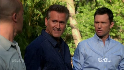 Burn Notice: Season 6 – Episode Under the Gun