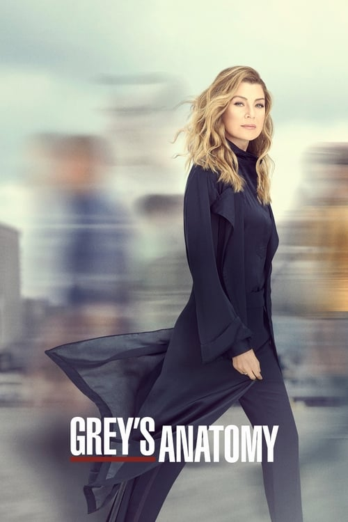 Grey's Anatomy Season 3 Episode 21 : Desire