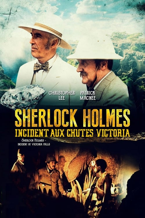 Image Sherlock Holmes - Incident aux chutes Victoria