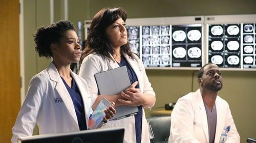 Grey's Anatomy - Season 11 - Episode 15: I Feel the Earth Move
