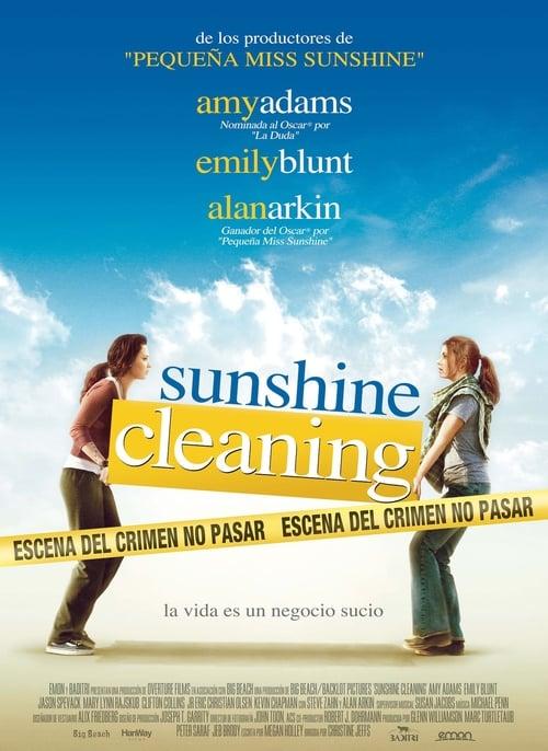 Imagen Sunshine Cleaning