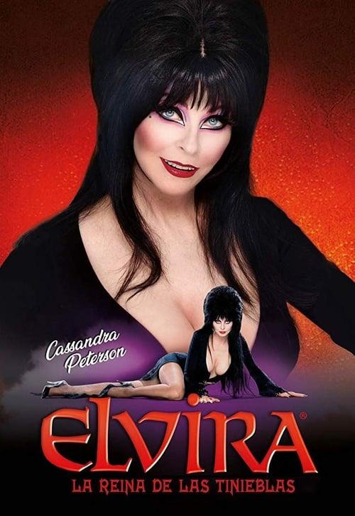 Mira La Película Elvira, reina de las tinieblas En Línea