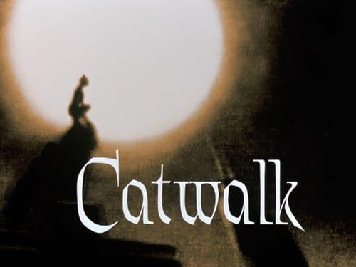 Batman: The Animated Series - Season 4 - Episode 3: Catwalk