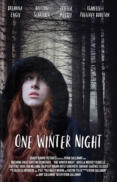 Watch One Winter Night Online Free Viooz