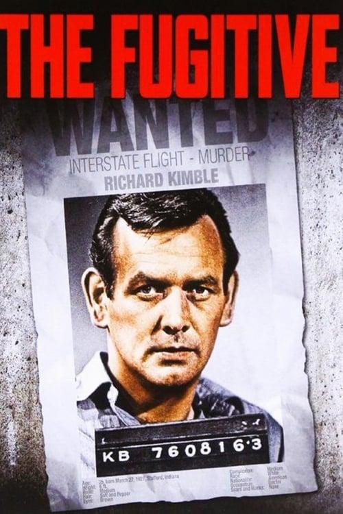 The Fugitive: Specials