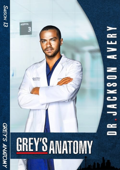 Grey's Anatomy: Saison 13