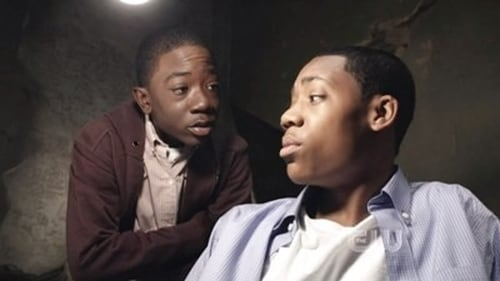 Watch Everybody Hates Chris S4E09 Online